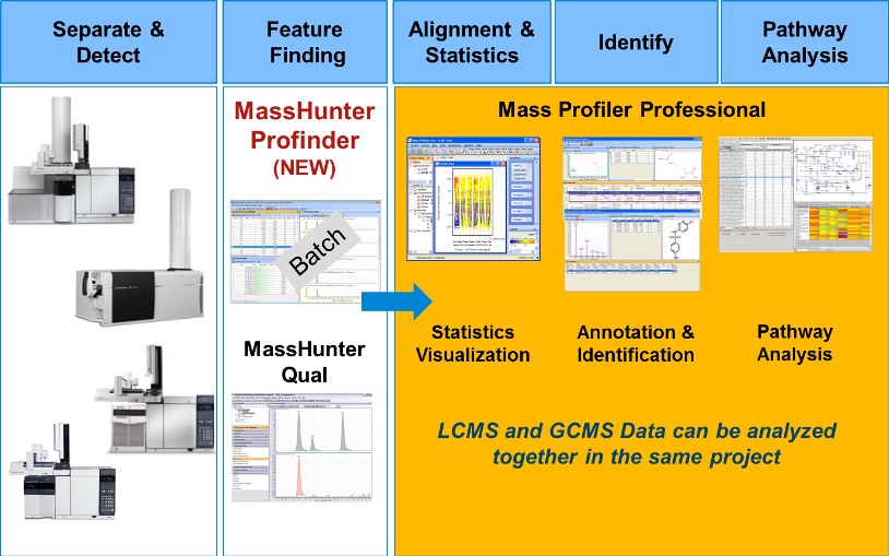 Overview of