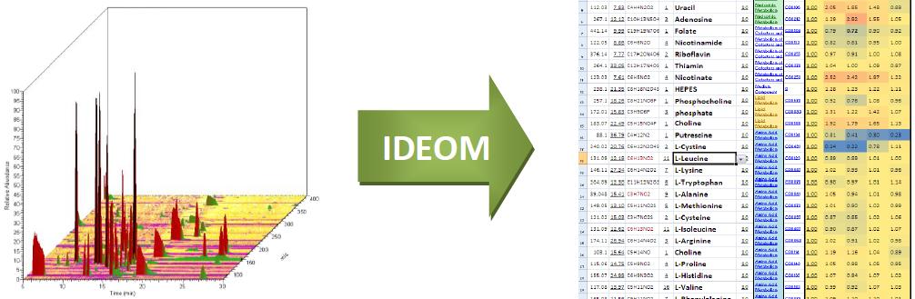 IDEOM Image
