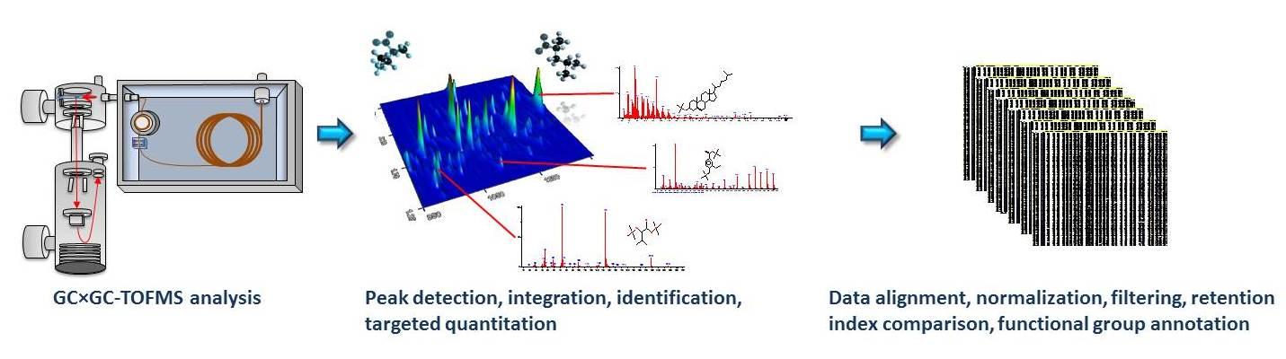 Typical GC×GC-TOFMS metabolic profiling workflow