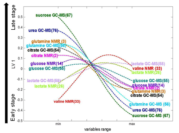 Loading plot of         pseudo-samples trajectories for selected NMR and GC-MS         variables