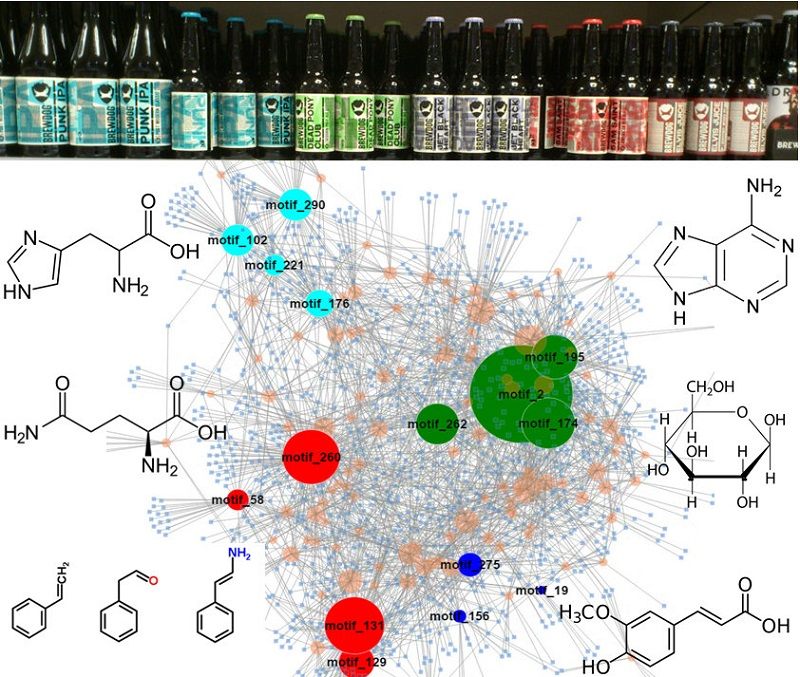 Network representation of decomposed fragmentation               data of beer extract