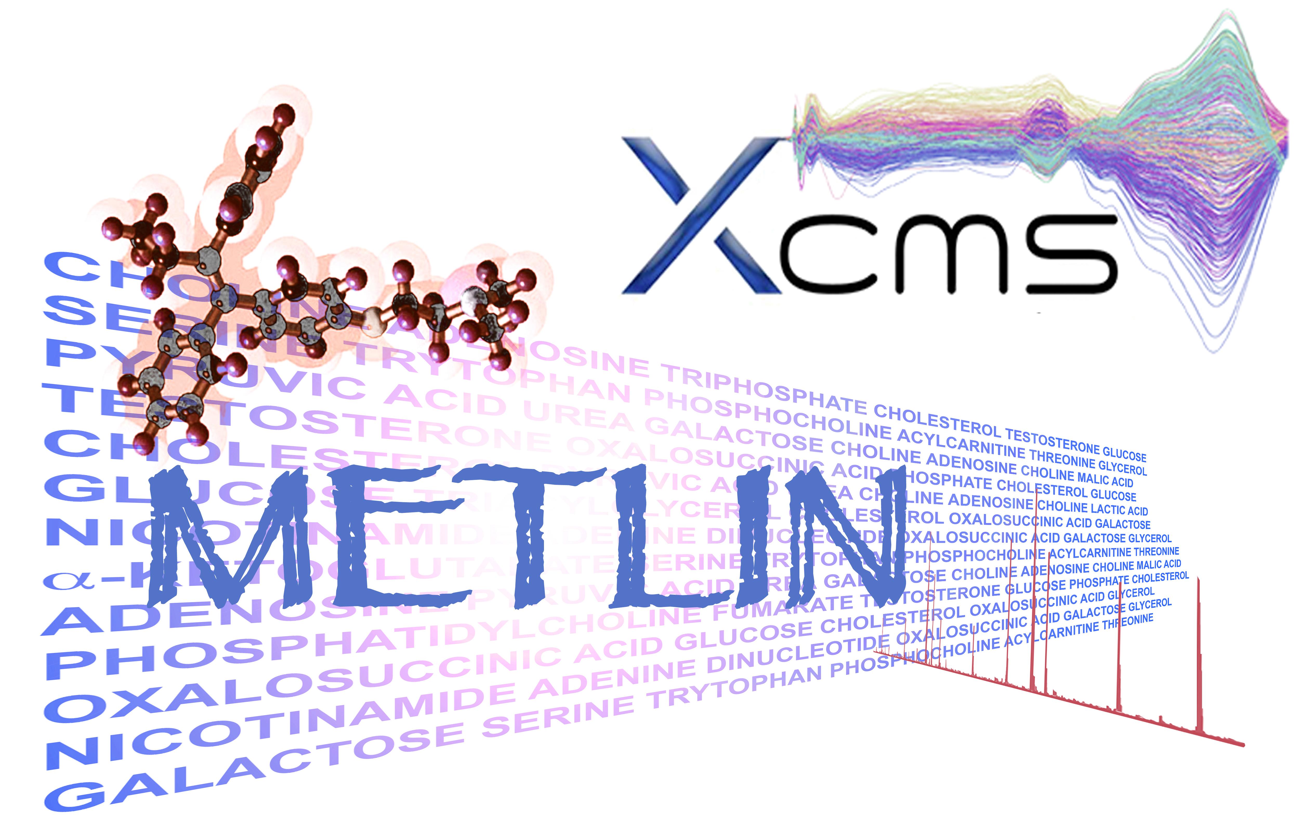 Metline               XCMS Logo
