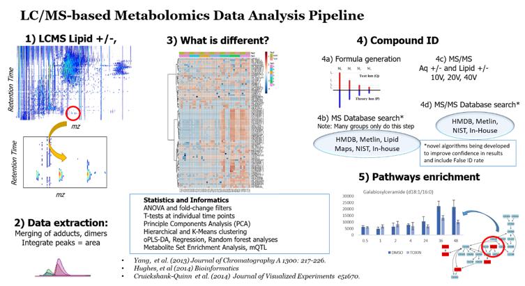 LC/MS-based Metabolomics Data Analysis Pipeline