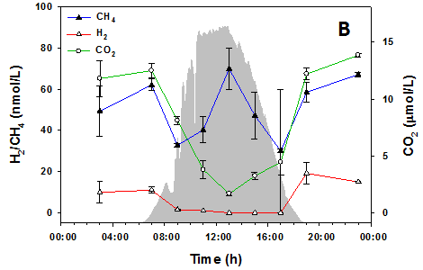 Dissolved CO2, H2 and