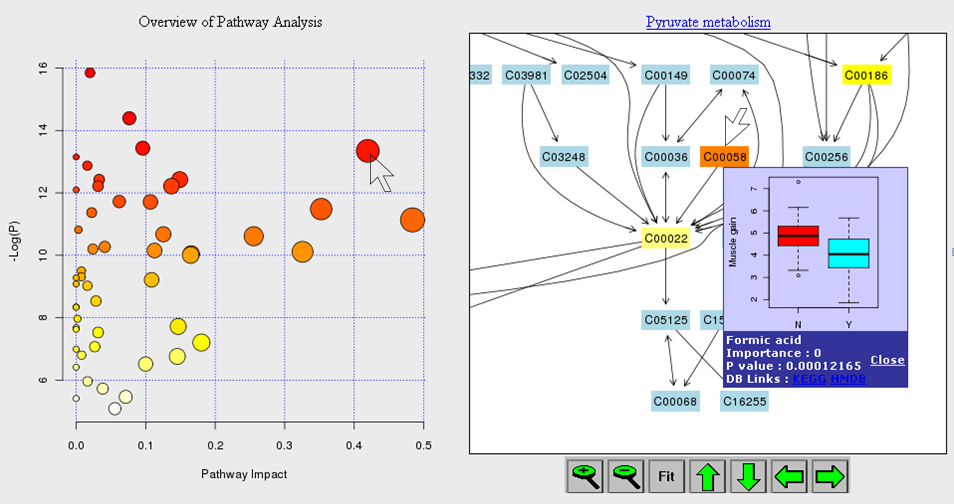 Pathway analysis results & visualization