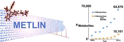 METLIN tandem mass spectrometry database