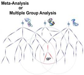 Meta-Analysis or Multiple Group Analysis