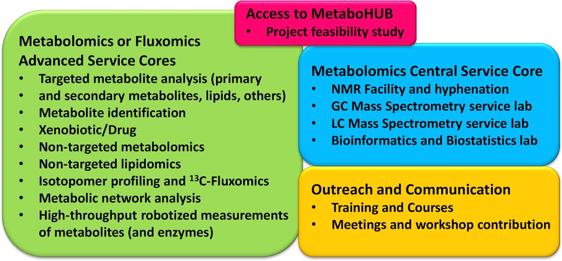 MetaboHUB analytical and bioinformatics